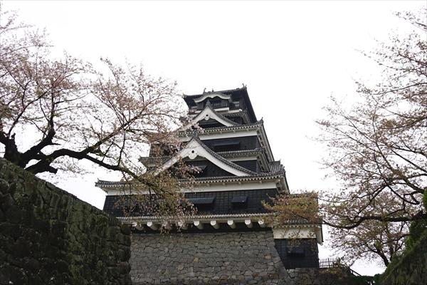 日本三大名城の一つ、熊本城