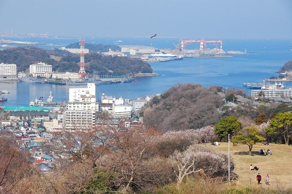 海・山・住居が近接する、横須賀ならではの風景